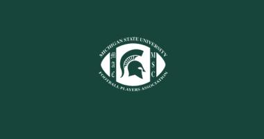 msufpa-logo-green